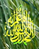 Muhammad-Rosuululloh.jpg